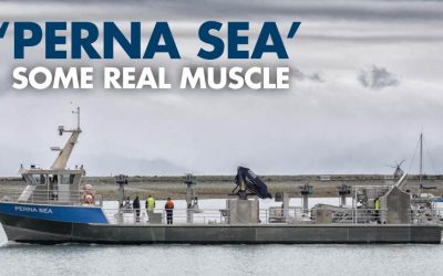 Perna Sea: Some Real Muscle